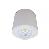 PROLI DL 3000 23W LED IP40