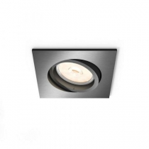 PHILIPS FUNCTIONAL LIGHTING DONEGAL 50401/99/PN
