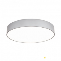 ORION SPACE DL 7-630/45 ALU-MATT 45CM LED DIMMABLE 40W 3200LM